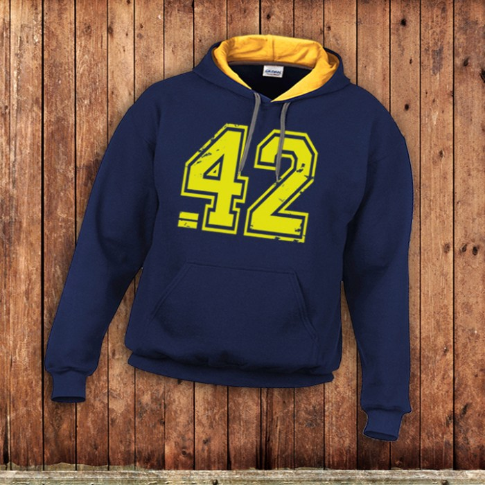 42 the answer Hoody